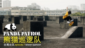 PANDA PATROL: TAIWAN TYPHOON | VIDEO